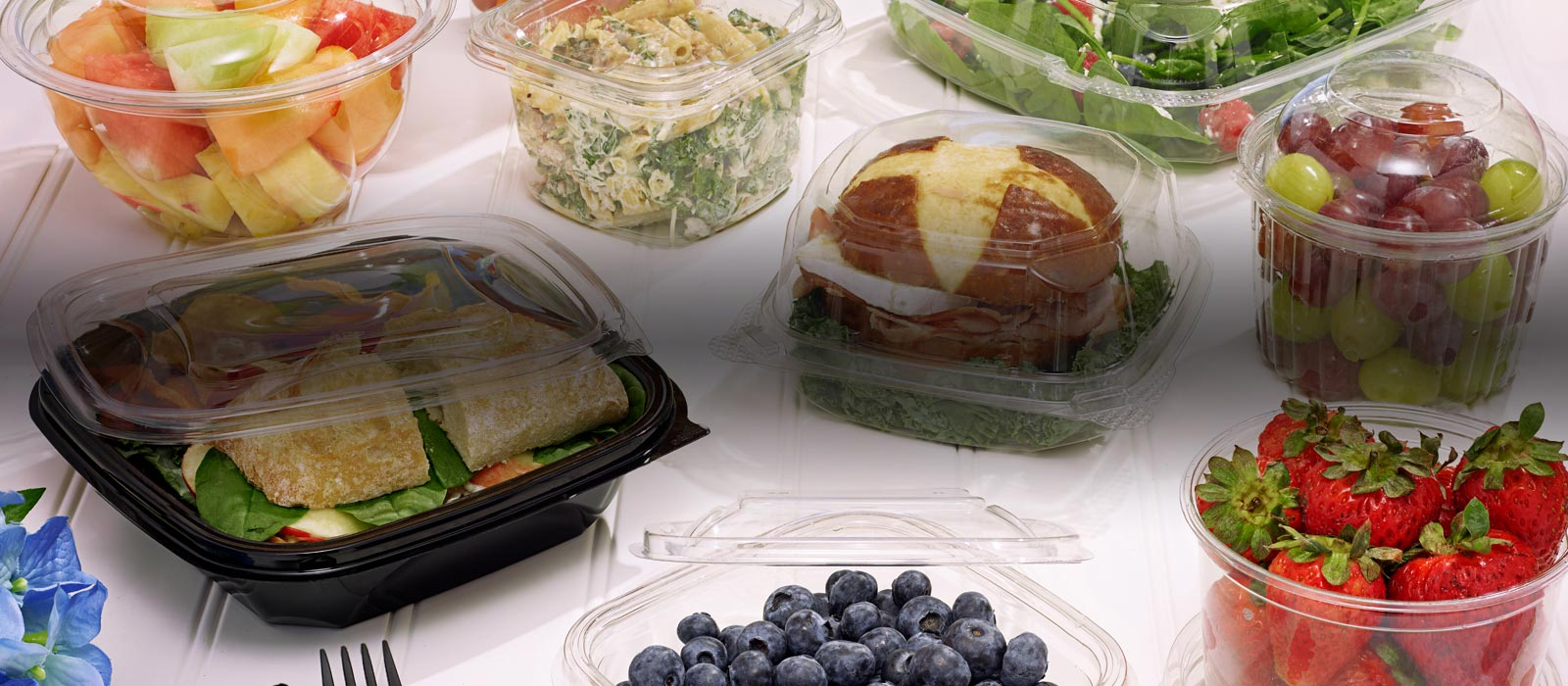 EarthChoice Line of Sustainable Foodservice Products